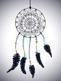 Color American Indians dreamcatcher with bird feathers and flora — ストックベクタ