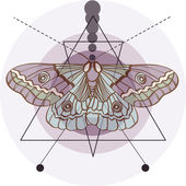 Hipster old fashion background with moth — 图库矢量图片