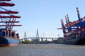 Container harbor in Hamburg — Stock Photo