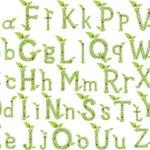 Green Leaves font. Vector illustration. — Stock Vector
