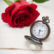 Pocket Watches and Rose — Stock Photo #14793107