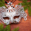 Spruce branches and carnival mask — Stock Photo #31409645
