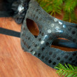 Spruce branches and carnival mask — Stock Photo #31735417