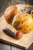 Orange-cap boletus mushrooms — Stock Photo