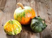 Autumn pumpkins — Stock Photo