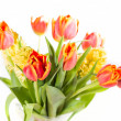 Bouquet of yellow hyacinths and red tulips — Stock Photo #43250807