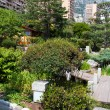 Stock Photo: Japanese garden of Monaco