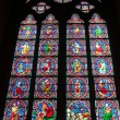 Stained glass window in Notre dame cathedral, Paris, France — Stock Photo