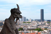 Famous Chimera from Notre Dame of Paris — Stock Photo