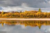 River in taiga (boreal forest) in Komi region — Stock Photo