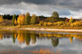 River in taiga (boreal forest) in Komi region — Stock Photo
