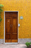 Authentic door at Santa Marina di Salina — Stock Photo
