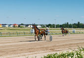 Harness Racing, Berlin — Foto Stock