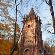 Stock Photo: Ruined tower Chapelle