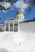 Mihaylovskiy cathedral and fortress wall — Foto de Stock