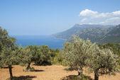 地中海の海岸κρύσταλλο ενέργειας — Stockfoto