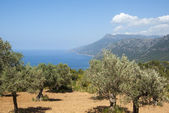 A costa do mar mediterrâneo — Foto Stock