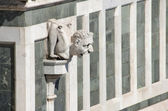 Gargoyle — Stock Photo