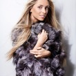 Stock Photo: Fur-coat