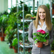 Stock Photo: Girl in flower shop