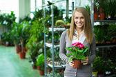 Girl in flower shop — Stock Photo