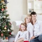 Family welfare — Stock Photo #4247836