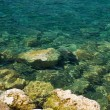 Sea ​​bottom with Stones in the Mediterranean — Stock Photo