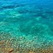 Sea ​​bottom with Stones in Mediterranean — Stock Photo