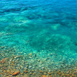 Sea ​​bottom with Stones in Mediterranean — Stock Photo #19478089
