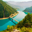 Mountain cold river in Montenegro — Stock Photo