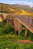 Long bridge over Tara river in Montenegro — Stock Photo