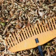 Rake and dry leaves — Stock Photo #1709210