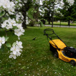 Stock Photo: Lawn mower in garden