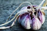 Two heads of garlic — Stock Photo