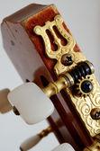 Hoofd gitaar hals met haringen tuning — Stockfoto