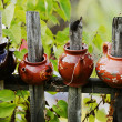 Four ceramic teapot on a wooden fence — Stock Photo