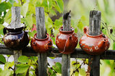 Four ceramic teapot on a wooden fence — Stockfoto