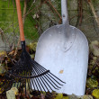 Autumn still life, rake, shovel, and leaves — Stock Photo