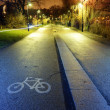 Bike path in the park night city, Helsinki — Stock Photo