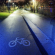 Bike path in the park night city — Stock Photo