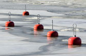 Red buoys in the frozen water — Stock Photo