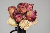 Ramo de rosas secas en florero de cerámica — Foto de Stock