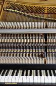 Inside the piano: string, pins, keys — Stock Photo