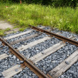 Old rusty rails, sleepers and grass — Stock Photo #49387647