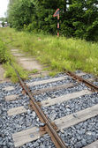 Old rusty rails, sleepers and grass — Stock Photo