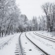 railroad in snow under blue sunny sky — Stock Photo #16784385