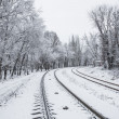 Railroad in snow under blue sunny sky — Stock Photo