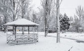 Winter in the city park — Stock Photo