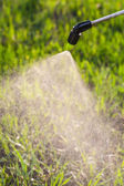 Watering the lawn with a sprayer — Stock Photo