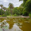 Стоковое фото: Smooth water of pond reflects coastal